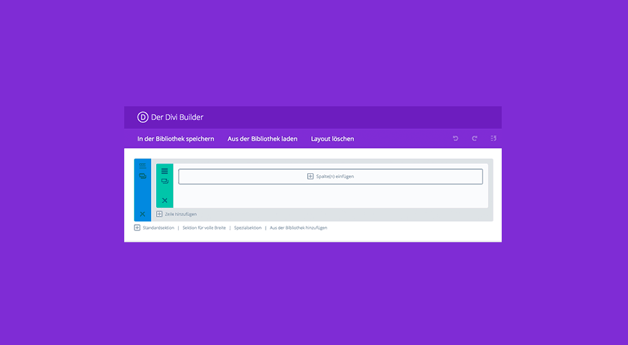 Divi Page Builder in Custom Post Types nutzen (z.B. WooCommerce)