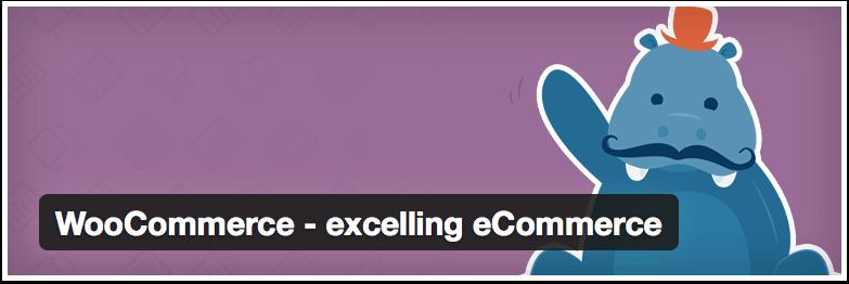 WordPress---WooCommerce---excelling-eCommerce---WordPress-Plugins