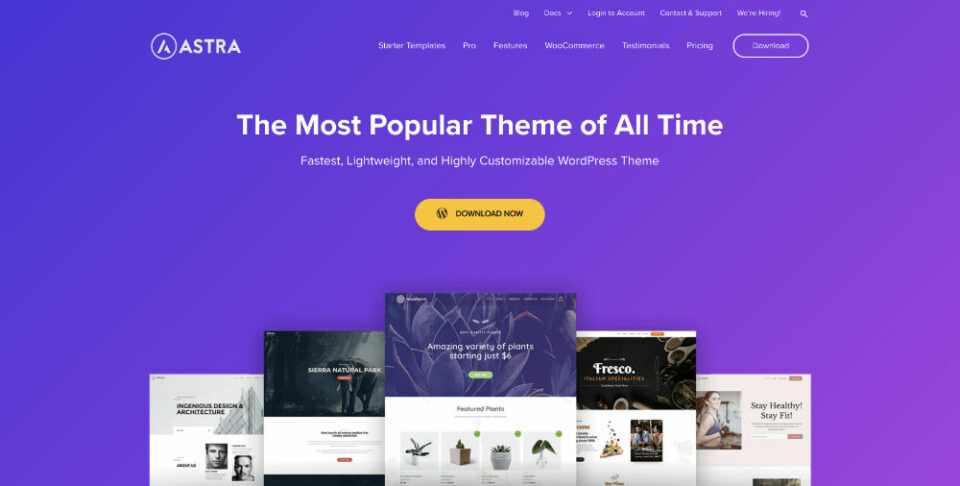 Review WooCommerce Themes Deutsch: Astra