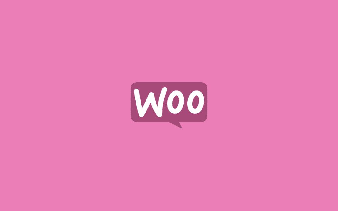 Die besten WordPress WooCommerce Themes Deutsch